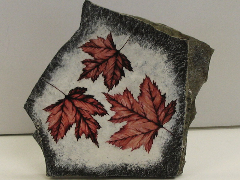 Slider-Maple-Leaf